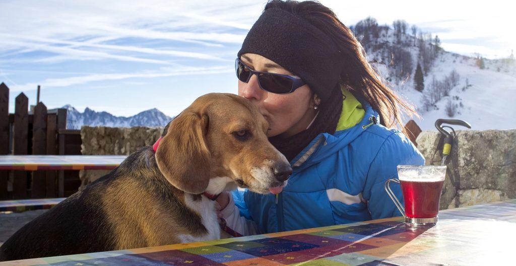 beagle-trekking