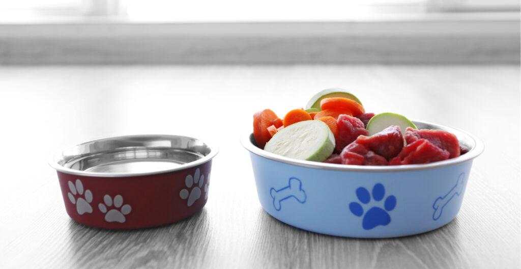 dog-food-water-bowls