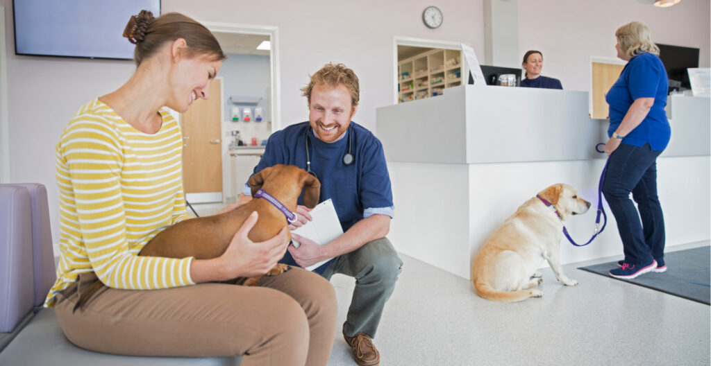 reduced-cost-vet-care