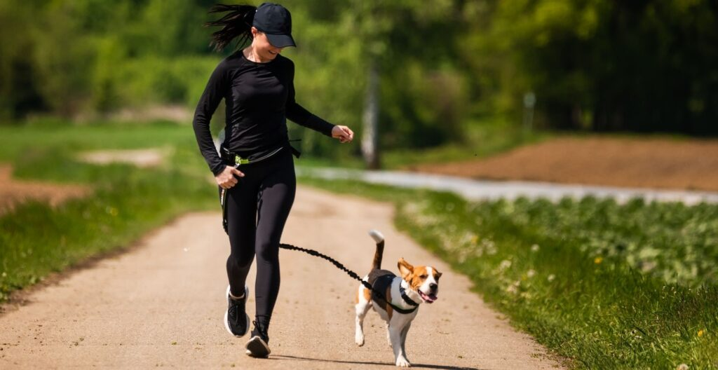 best-hands-free-dog-leash-for-running