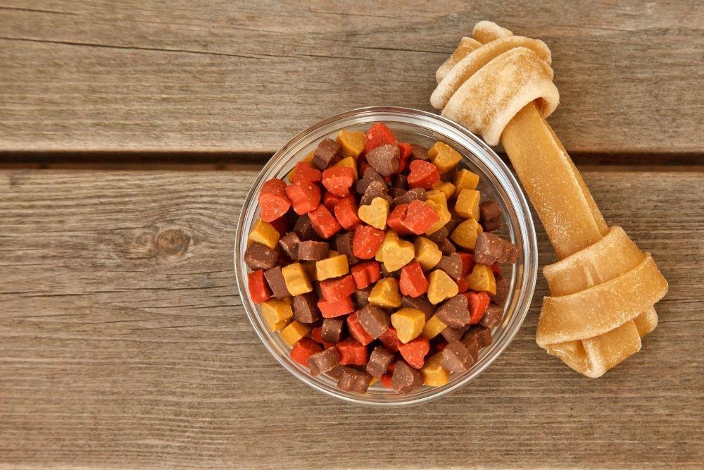 choosing-dog-food-and-treats
