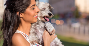 havanese-dog-breed-guide-personality