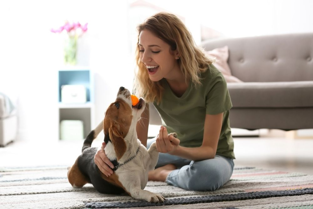 woman-playing-with-dog