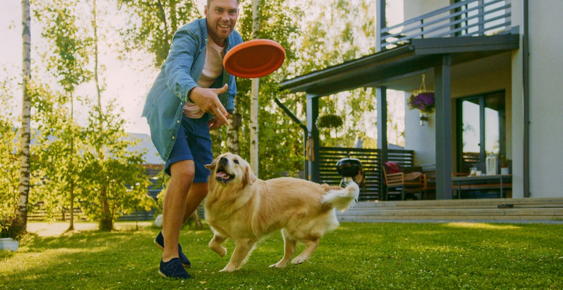 fun-activities-to-do-with-your-dog